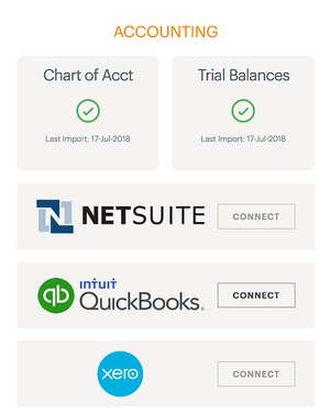 NetSuite import screenshot