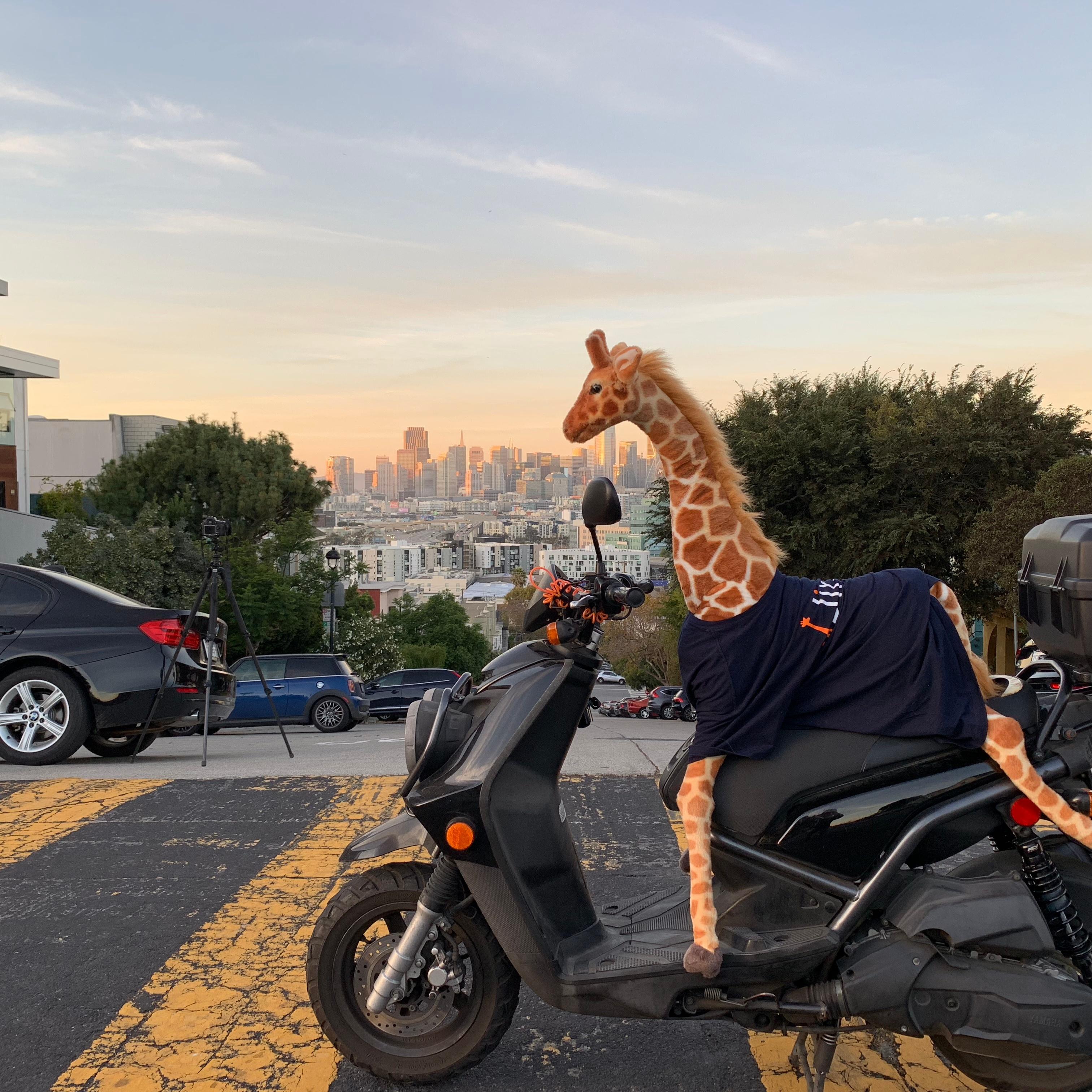 Jirav Scooter Pick pic